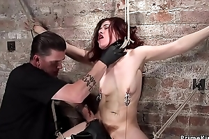 Hairy mollycoddle anal fingered involving hogtie